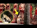 Street Dog WALKS The RAMP At Sidharth Malhotra Diana Penty Fashion Show 2019