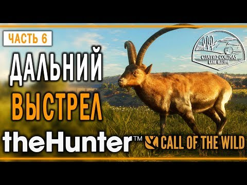 "theHunter Call of the Wild #6 🐺 - Дальний Выстрел - ""Куатро Колинас"""