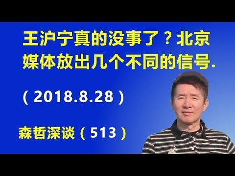 王沪宁真的没事了?北京媒体放出几个不同的信号.(2018.8.28)