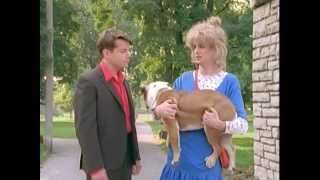 Kids in the Hall - Terriers