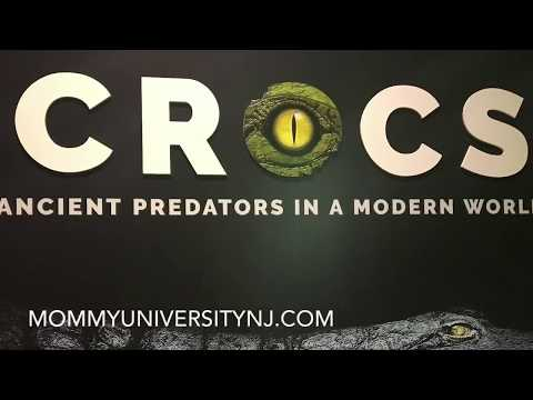 Crocs Ancient Predators in a Modern World: Exhibit at the Academy of Natural Sciences