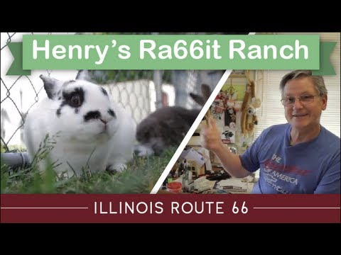 Illinois Route 66 Attractions; Henry's Ra66it Ranch, Staunton