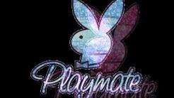 Playboy Hasen Bilder