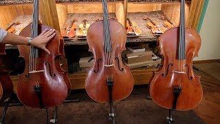 3 Popular Cello Models - Montagnana, Guarneri and Stradivarius   Luthier Lessons