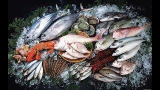 Будет рыба?!В Мурманске откроется первый в регионе государственный рыбный магазин