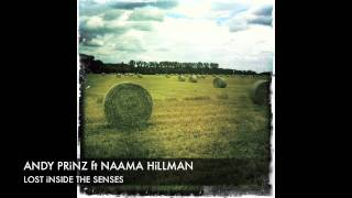 Andy Prinz feat Naama Hillman Lost inside The Senses Mellow Mix + Lyrics