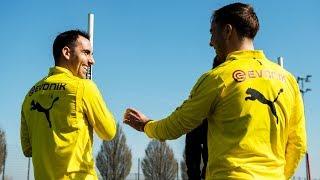 Witsel, Alcácer and Götze are back on the pitch | Borussia Dortmund Training