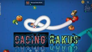 Cacing Rakus game cacing io ulang rakus - SEHATI GAME screenshot 3
