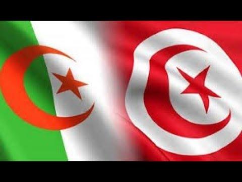 قناة الغد:تونس والجزائر على بعد خطوة من نهائي أمم أفريقيا...هل سيكون اللقب عربيا؟