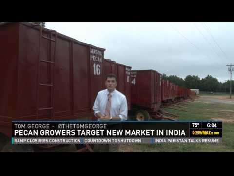 Pecan Growers Targeting India