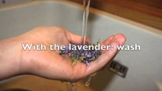 Step By Stey: How To Make Mint And Lavender Tea!