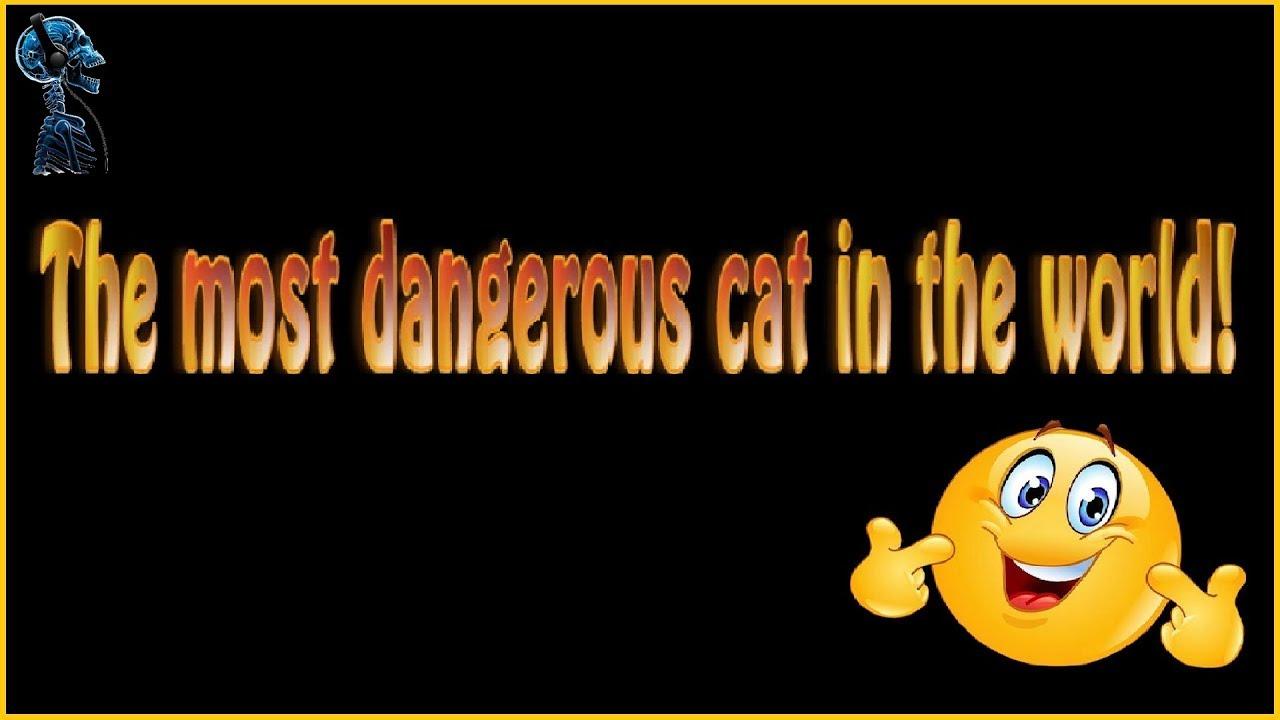 dangerous deutsch
