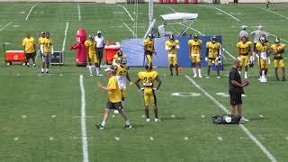 Steelers Training camp 7/29/18