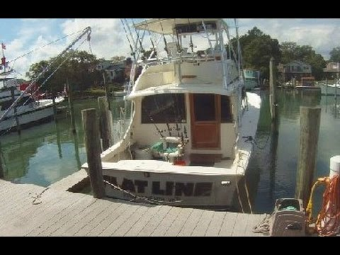 Aquaman Fishing Charter At Rudee Inlet VA Beach