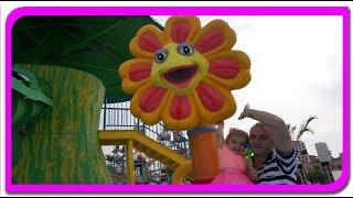 Gasim floricele si invatam culorile  Anabella Show!