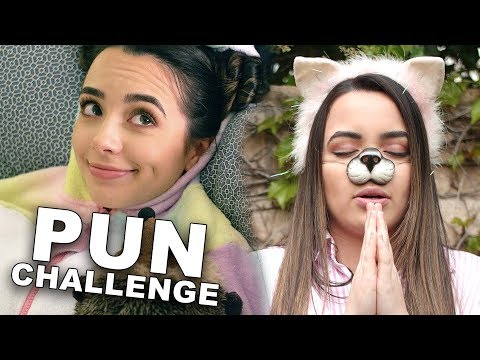 The Pun Challenge!? - Merrell Twins