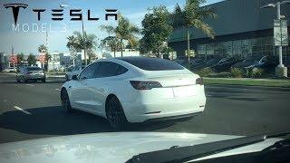 Racing a Tesla Model 3? | Tesla 3 spotting LA, CA