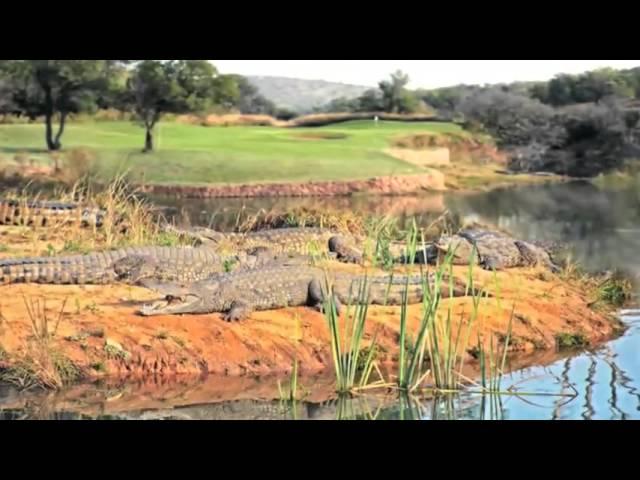Video over de Elements Golf Course in Zuid-Afrika