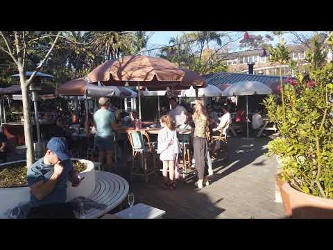 The Newport (Arms Hotel) - Sydney's Best Pub! | 4K Ultra HD