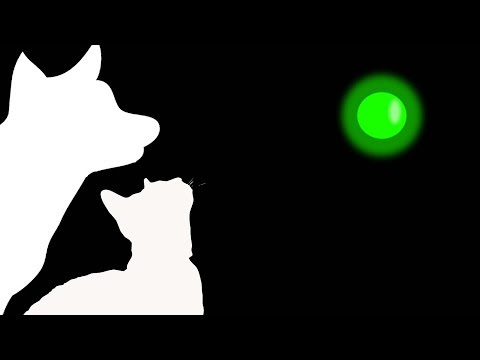 CAT GAMES - GREEN LASER CHASER (FOR CATS ONLY)