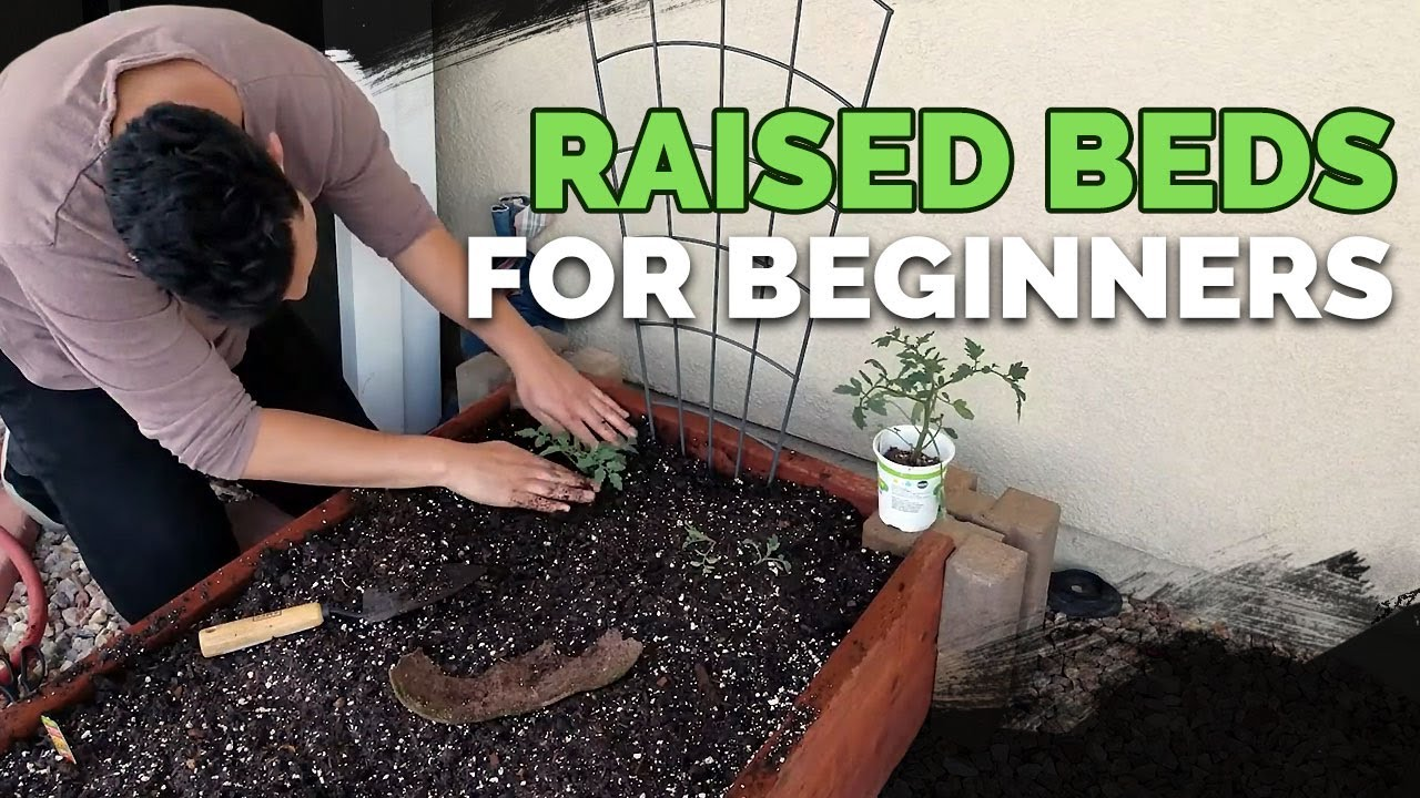 Raised Bed Gardens for Beginners - Planning, Soil Mix, and Planting Guide