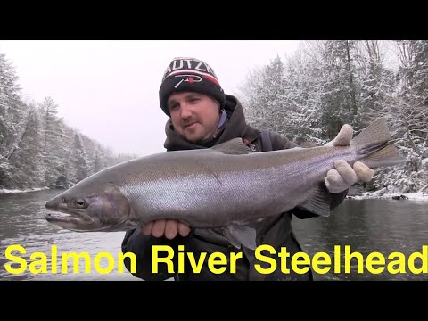 Salmon River Winter Steelhead Fishing