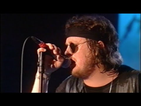 Zucchero & Brian May - Madre Dolcissima (Montreux Jazz Festival 1996)