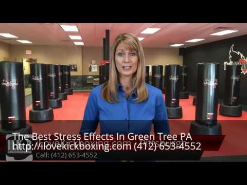 Stress Effects Green Tree PA