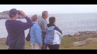 The Elliston Puffin Site - Log #1