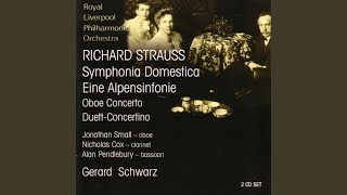 Duett-Concertino For Clarinet, Bassoon And Strings: Rondo - Allegro Ma Non Troppo