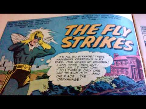 The original FLY #1.1-ARCHIE UNIVERSE