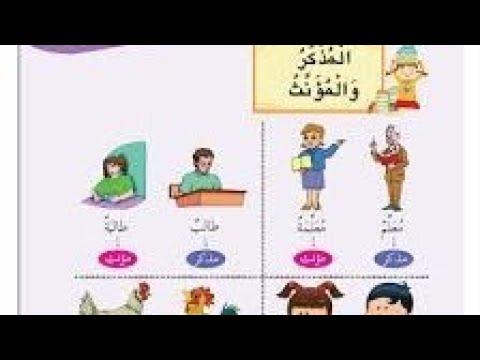 شرح درس المذكر والمؤنث اول متوسط