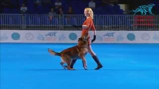 FCI Dog dance World Championship 2016 – Winner heelwork to music  Ilina Polina and Ilim (Russia)