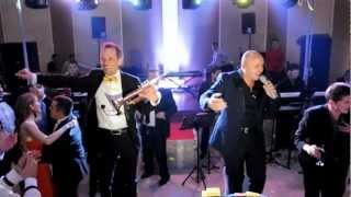 Mirel Manea & Marcel Pavel - Canta cucu bata-l vina
