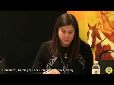 Congressional Committee on Commerce, Land and Gaming Public Hearing (Grayhorse) Part 2