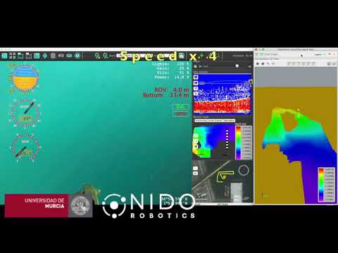 Underwater mapping. Bathymetry with an echosounder