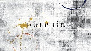 abk dolphin
