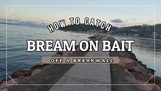 HOW  to CATCH BREAM on BAIT off a BREAKWALL (Basic bream fishing )