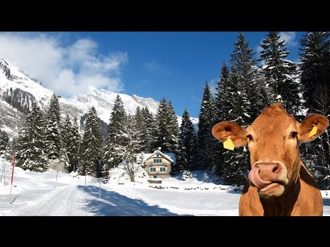 Switzerland Winter | HD