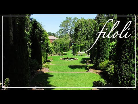 California Travel Vlog A Mansion Of The Arts Sf Bay Area Ep 2