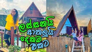 ලංකාවෙ එකම බොහීමියන් නවාතැන | Redwood Cabin | Hotels in Sri Lanka