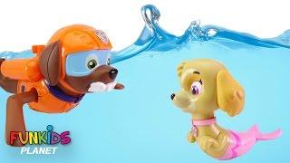 Best Learning Colors for Children: Paw Patrol Skye Chase & Poppy Troll Bath Time Bath Paddlin Pups