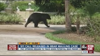 911 calls released in bear attack