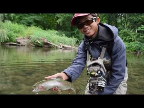 TRICO SUMMER- Fly Fishing The Pennsylvania Trico Hatch