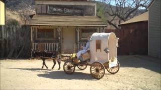 Mini Covered Wagon & Donkey Rides
