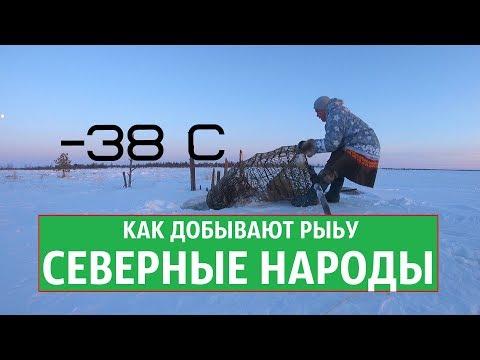 -38с ДОБЫВАЕМ РЫБУ
