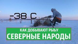 КАК ДОБЫВАЮТ РЫБУ ХАНТЫ СЕВЕРНЫЕ НАРОДЫ в мороз 38