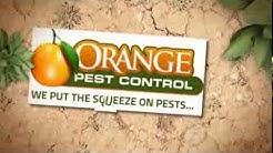 Pest Control Melbourne FL