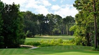Brazell's Creek Golf Course At Gordonia Alatamaha State Park In Georgia