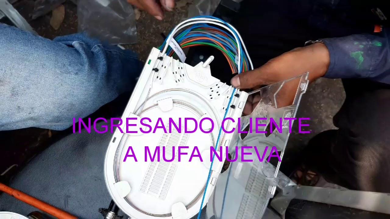 Www Mufa De